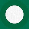 White/Varsity Green