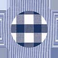 White Blue Oxford/Blue Check